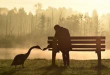 Стыдно одиноко